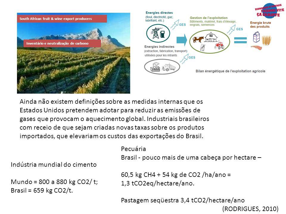 Brasil - pouco mais de uma cabeça por hectare –