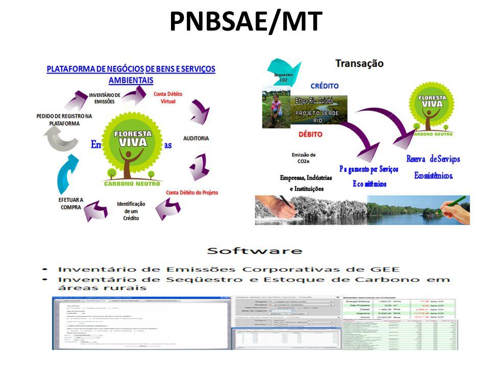 PNBSAE/MT