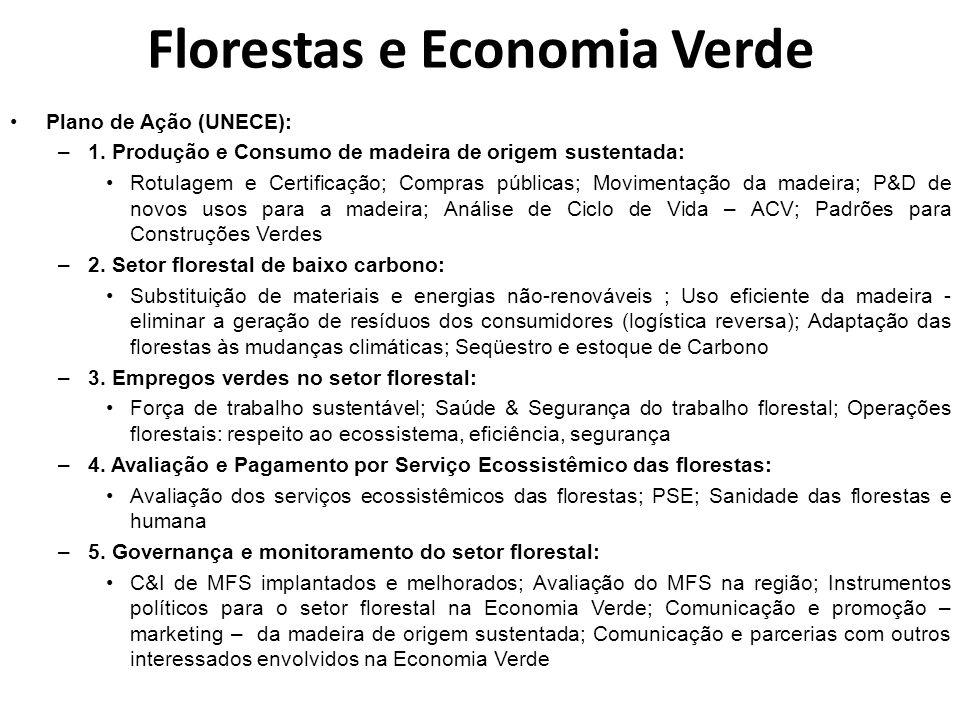 Florestas e Economia Verde