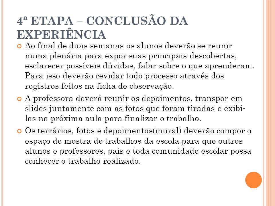 4ª ETAPA – CONCLUSÃO DA EXPERIÊNCIA