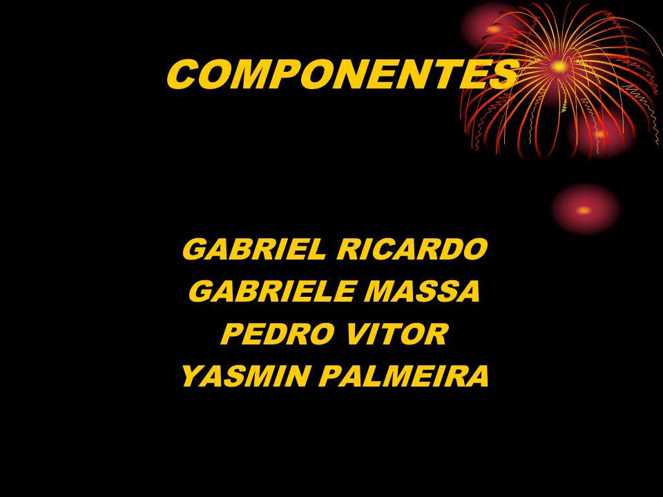 COMPONENTES GABRIEL RICARDO GABRIELE MASSA PEDRO VITOR YASMIN PALMEIRA