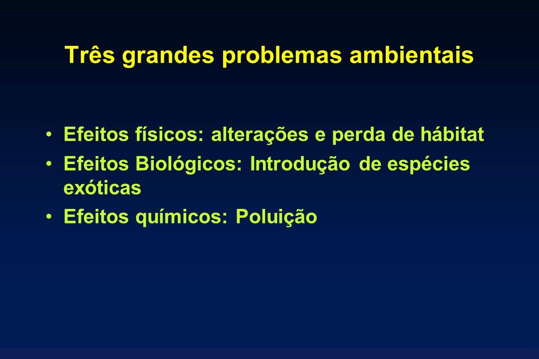Três grandes problemas ambientais