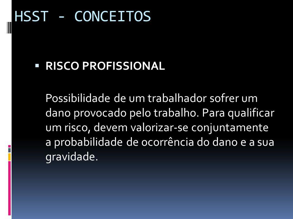 HSST - CONCEITOS RISCO PROFISSIONAL