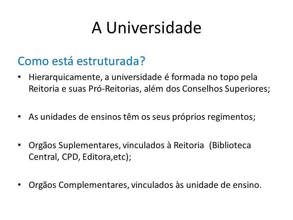 A Universidade Como está estruturada