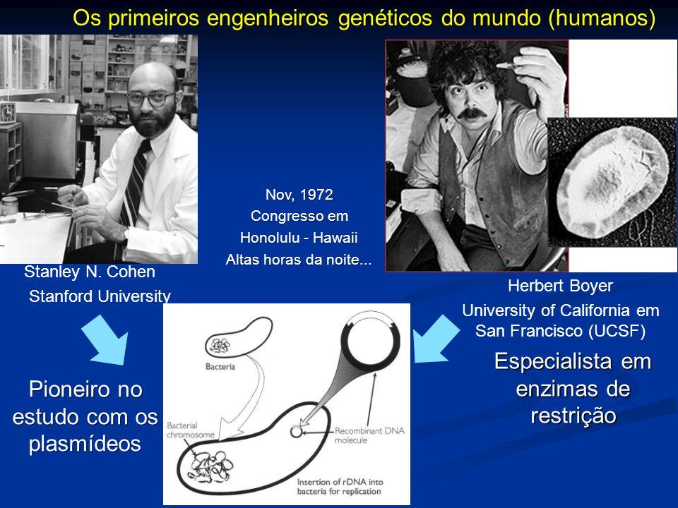 Os primeiros engenheiros genéticos do mundo (humanos)