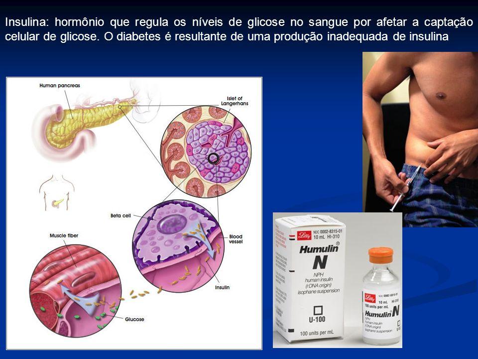 Insulina: hormônio que regula os níveis de glicose no sangue por afetar a captação celular de glicose.
