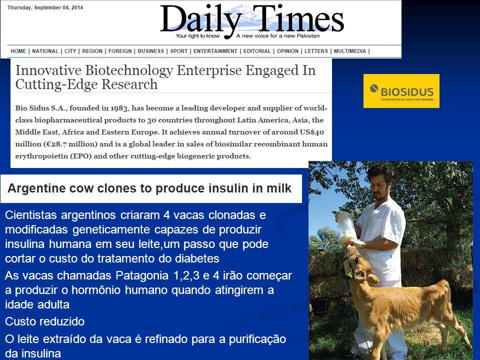 Cientistas argentinos criaram 4 vacas clonadas e modificadas geneticamente capazes de produzir insulina humana em seu leite,um passo que pode cortar o custo do tratamento do diabetes