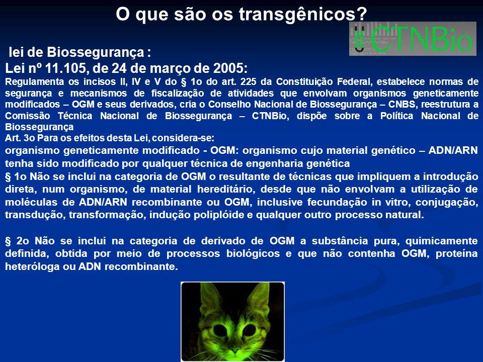 O que são os transgênicos