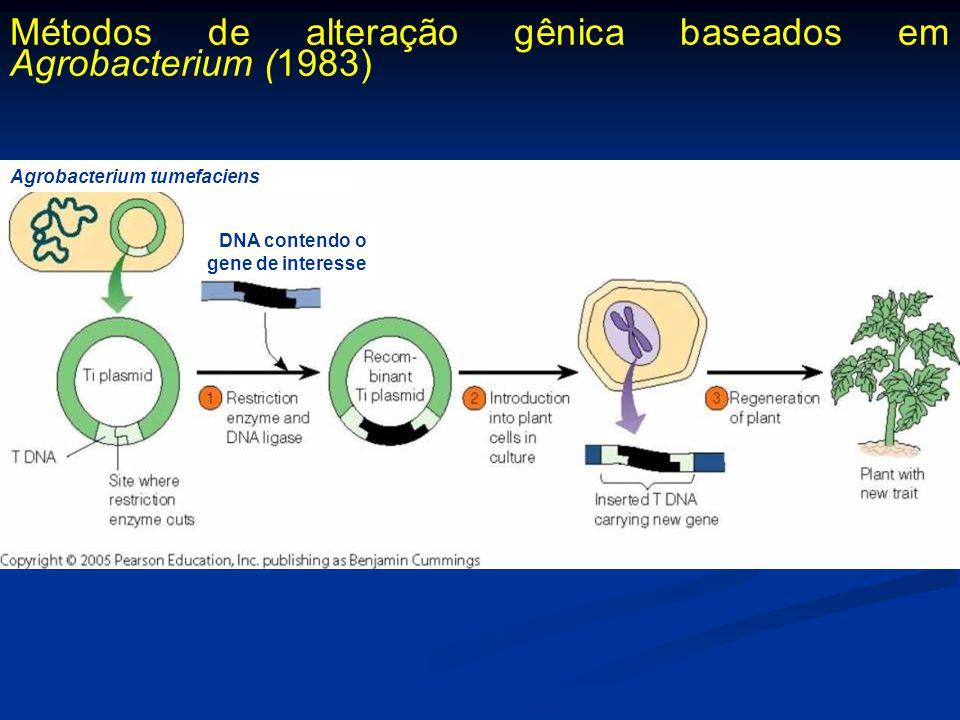Métodos de alteração gênica baseados em Agrobacterium (1983)