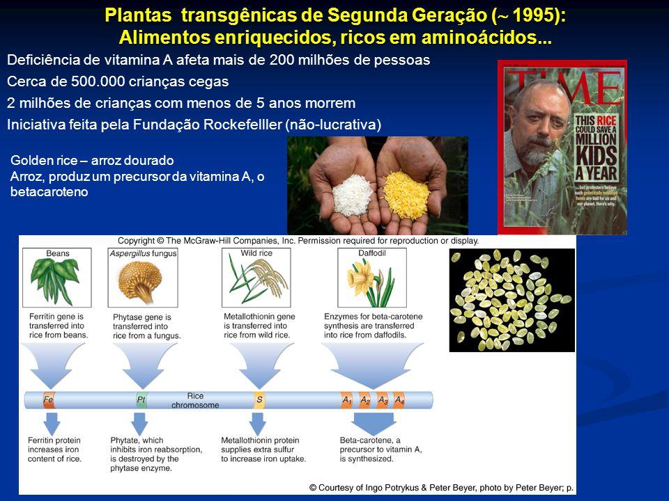 Plantas transgênicas de Segunda Geração ( 1995):