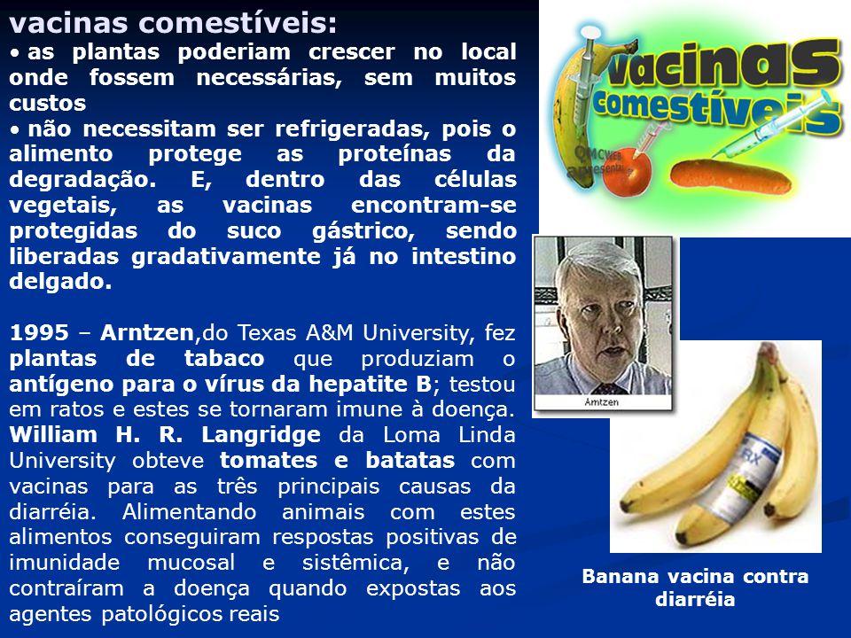 Banana vacina contra diarréia