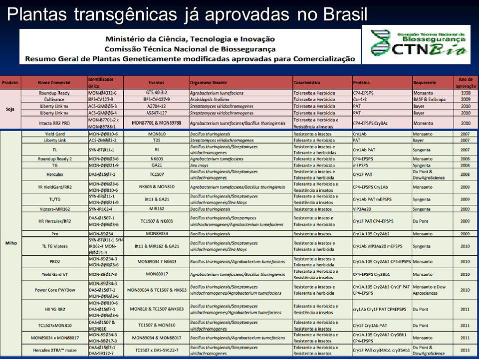 Plantas transgênicas já aprovadas no Brasil
