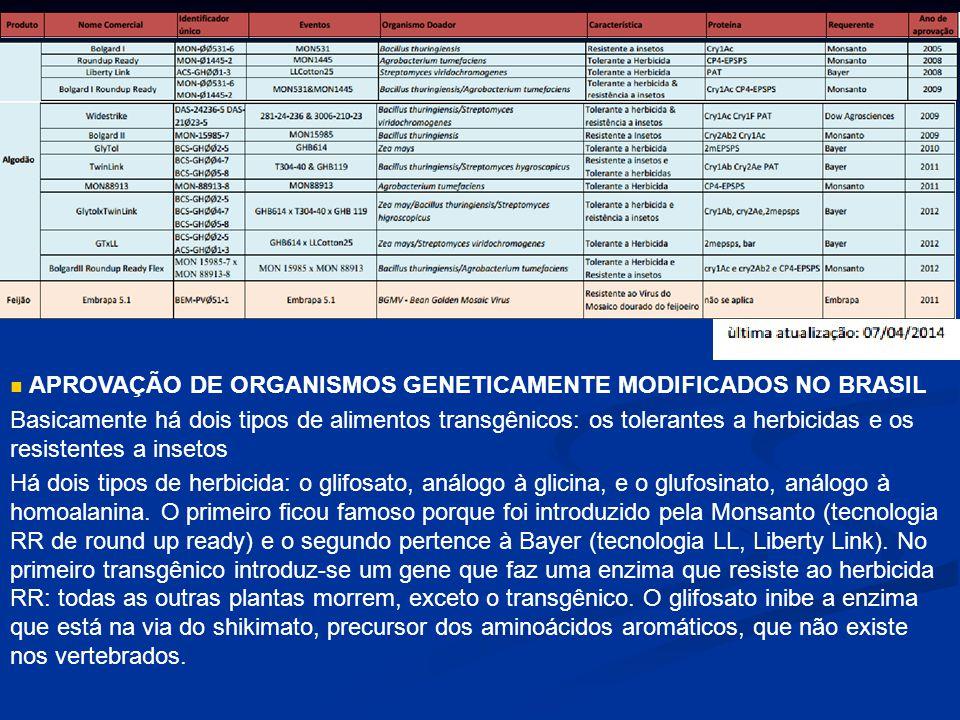 APROVAÇÃO DE ORGANISMOS GENETICAMENTE MODIFICADOS NO BRASIL