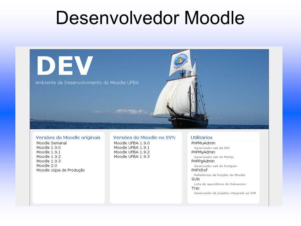 Desenvolvedor Moodle
