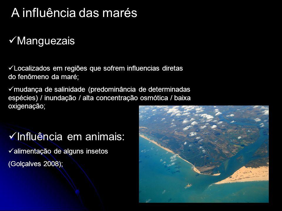 A influência das marés Manguezais Influência em animais: