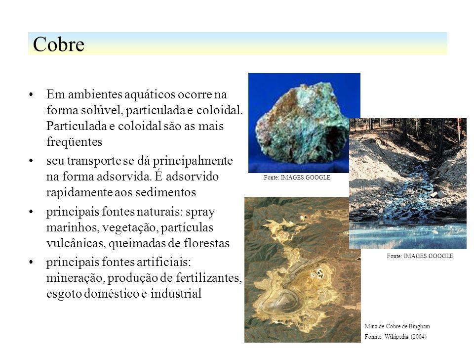 Cobre Em ambientes aquáticos ocorre na forma solúvel, particulada e coloidal. Particulada e coloidal são as mais freqüentes.