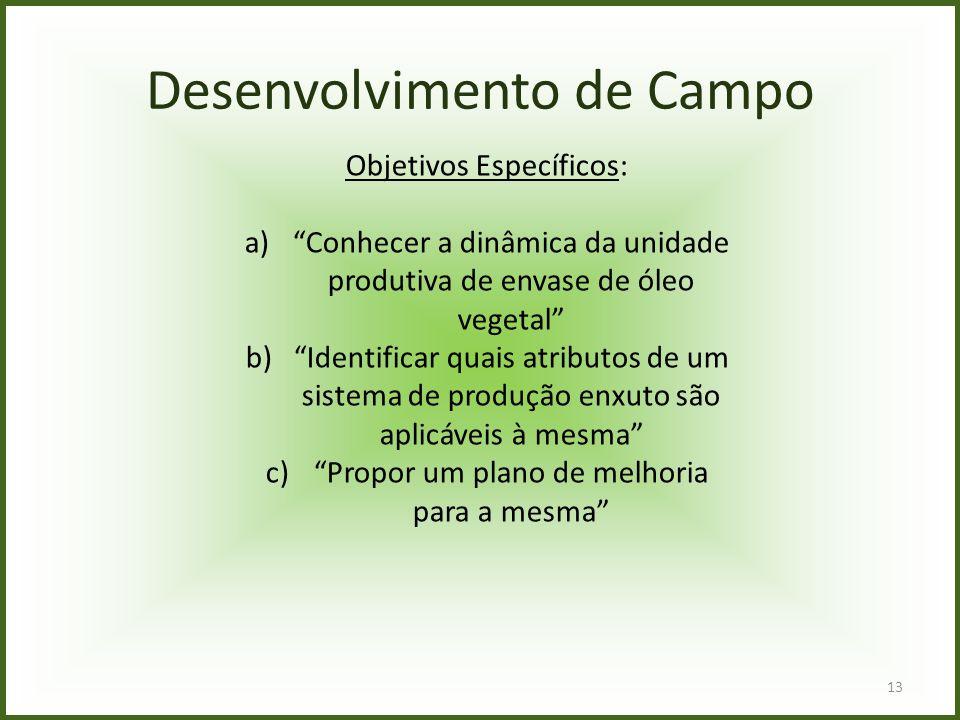 Desenvolvimento de Campo