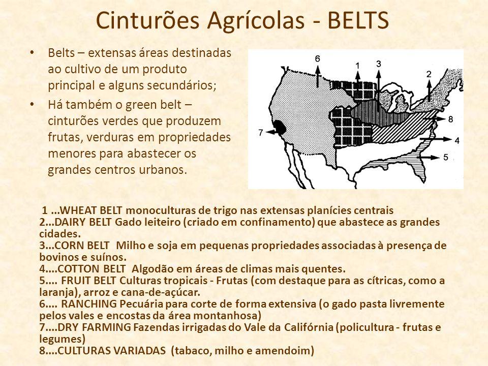 Cinturões Agrícolas - BELTS