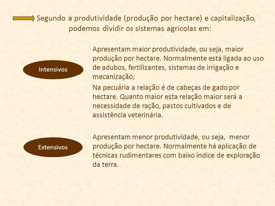 Segundo a produtividade (produção por hectare) e capitalização, podemos dividir os sistemas agrícolas em: