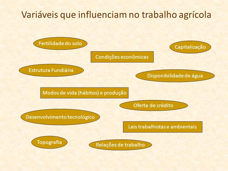 Variáveis que influenciam no trabalho agrícola
