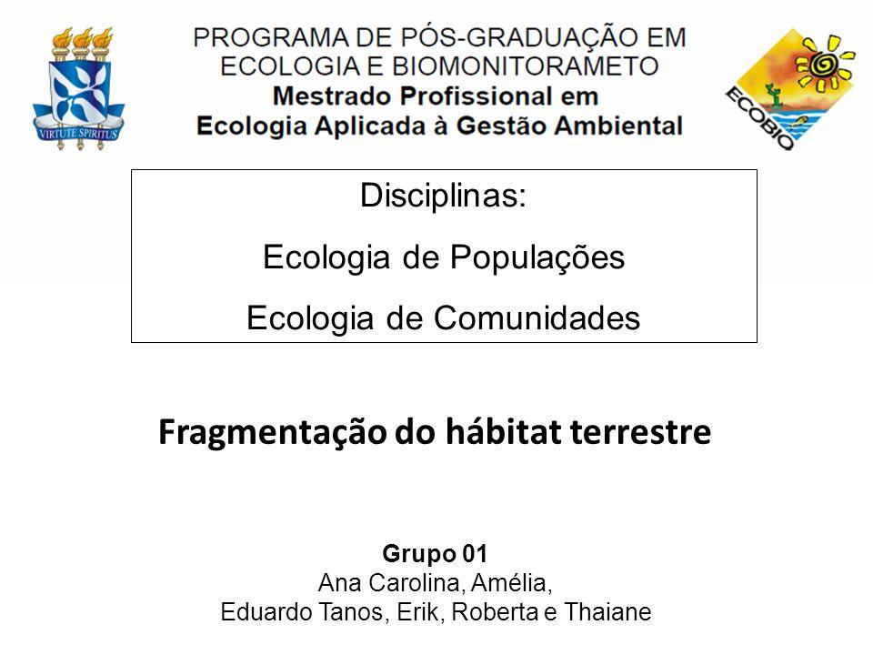 Fragmentação do hábitat terrestre