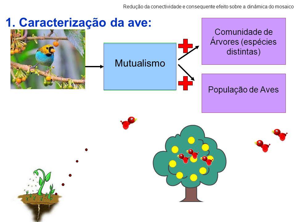 1. Caracterização da ave: