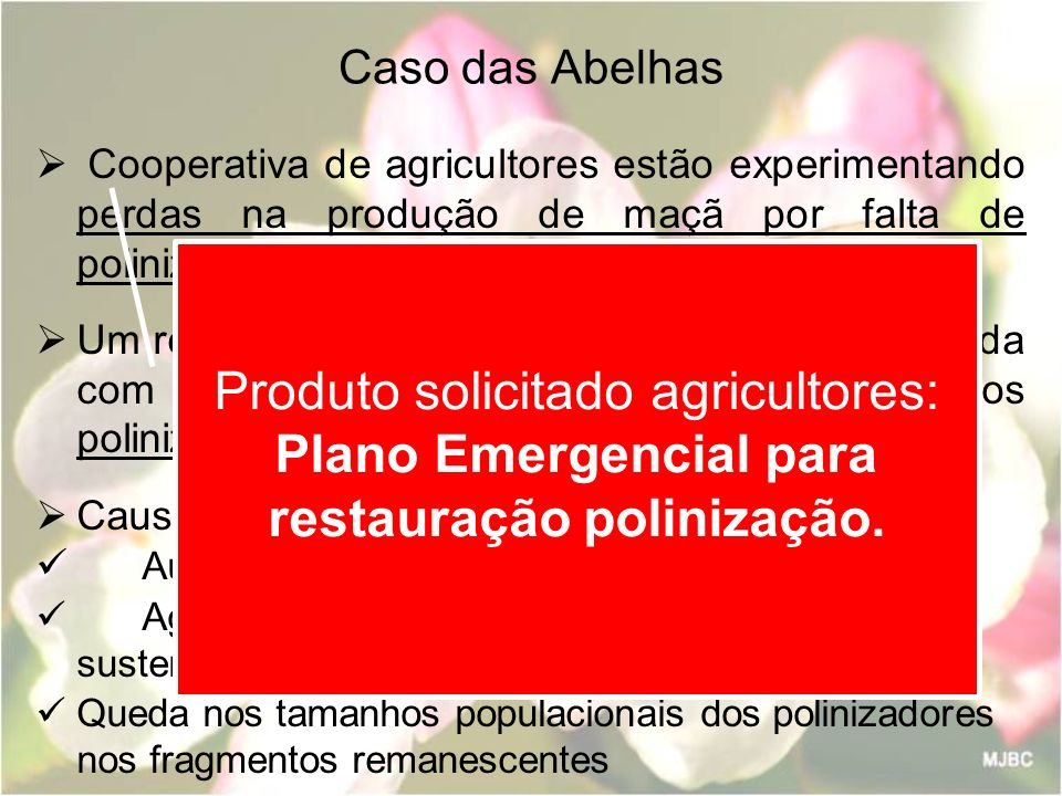 Caso das Abelhas Cooperativa de agricultores estão experimentando perdas na produção de maçã por falta de polinização adequada.
