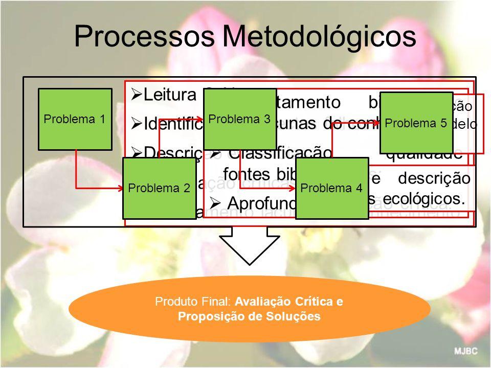Processos Metodológicos