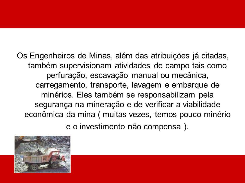 Os Engenheiros de Minas, além das atribuições já citadas, também supervisionam atividades de campo tais como perfuração, escavação manual ou mecânica, carregamento, transporte, lavagem e embarque de minérios.
