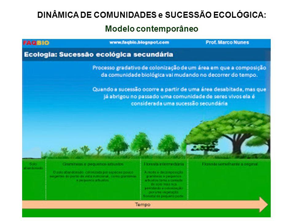 DINÂMICA DE COMUNIDADES e SUCESSÃO ECOLÓGICA: