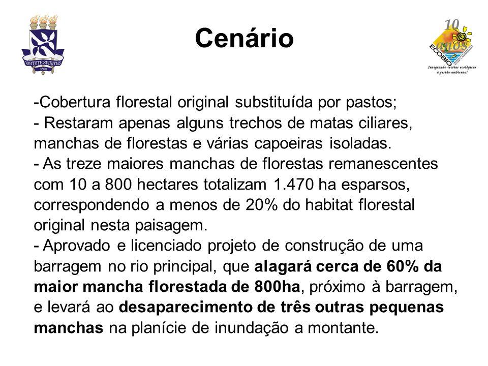 Cenário Cobertura florestal original substituída por pastos;