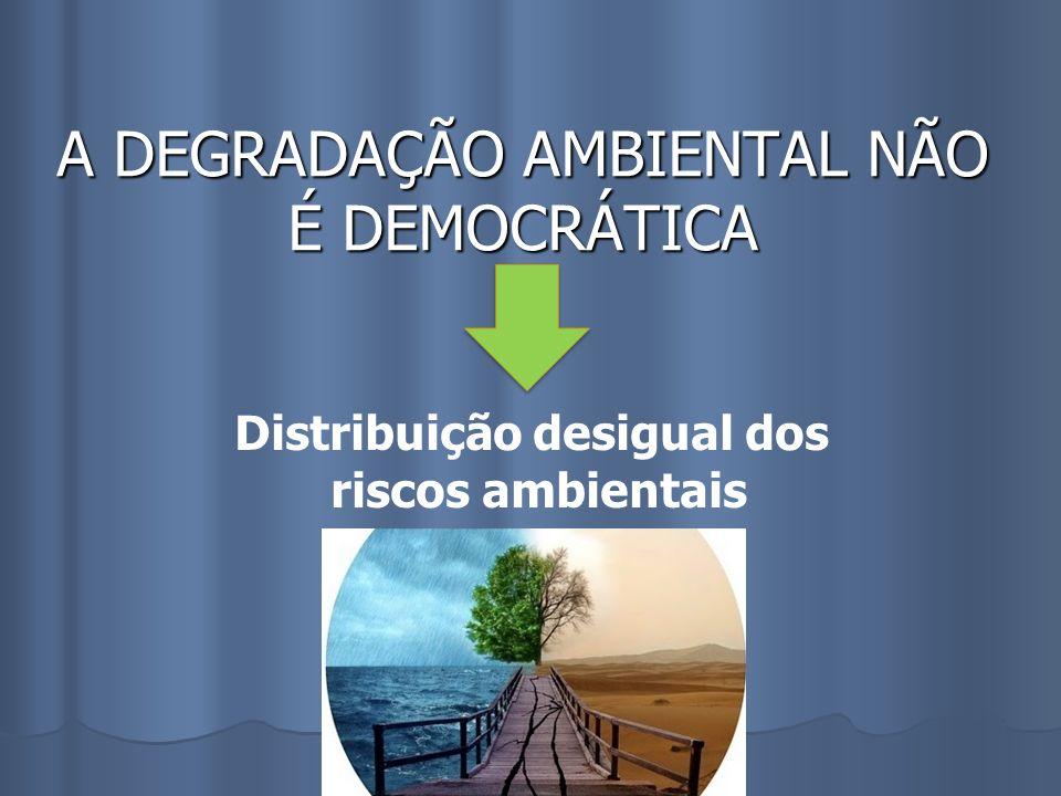 A DEGRADAÇÃO AMBIENTAL NÃO É DEMOCRÁTICA