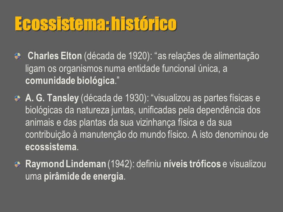 Ecossistema: histórico
