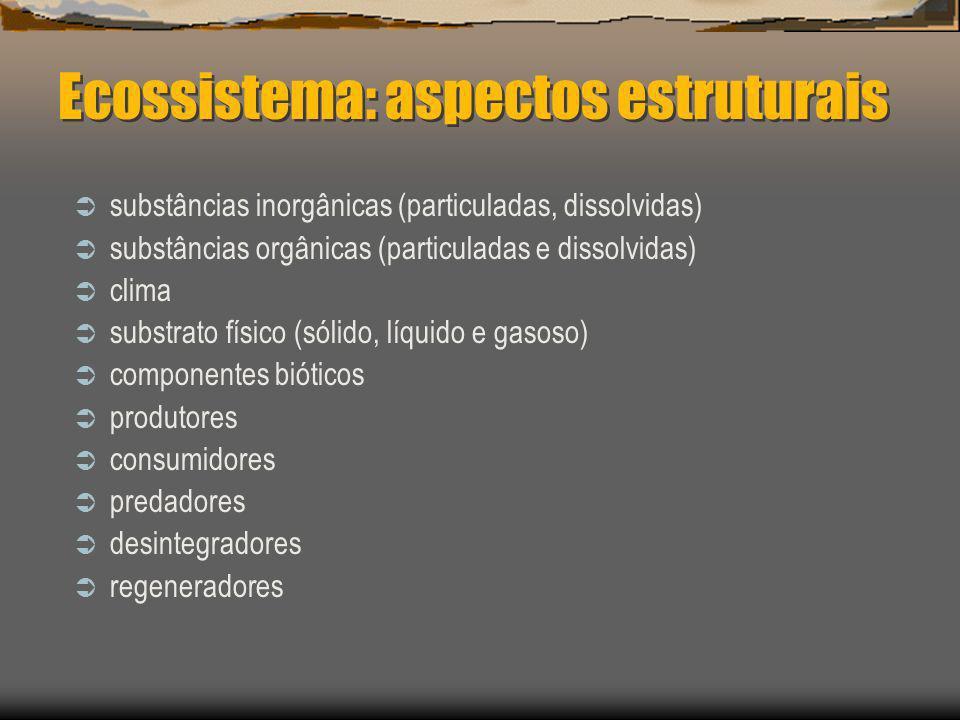 Ecossistema: aspectos estruturais