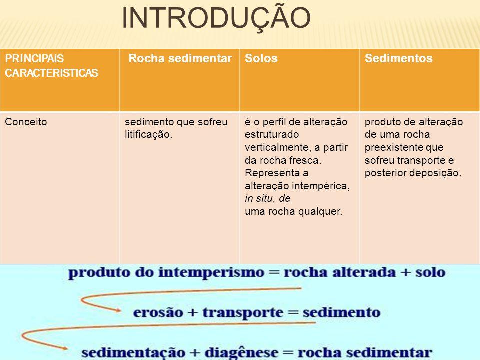 INTRODUÇÃO PRINCIPAIS CARACTERISTICAS Solos Sedimentos