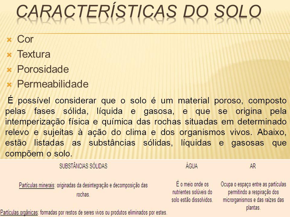 CARACTERÍSTICAS DO SOLO