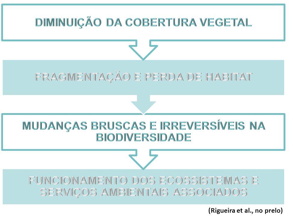 (Rigueira et al., no prelo)