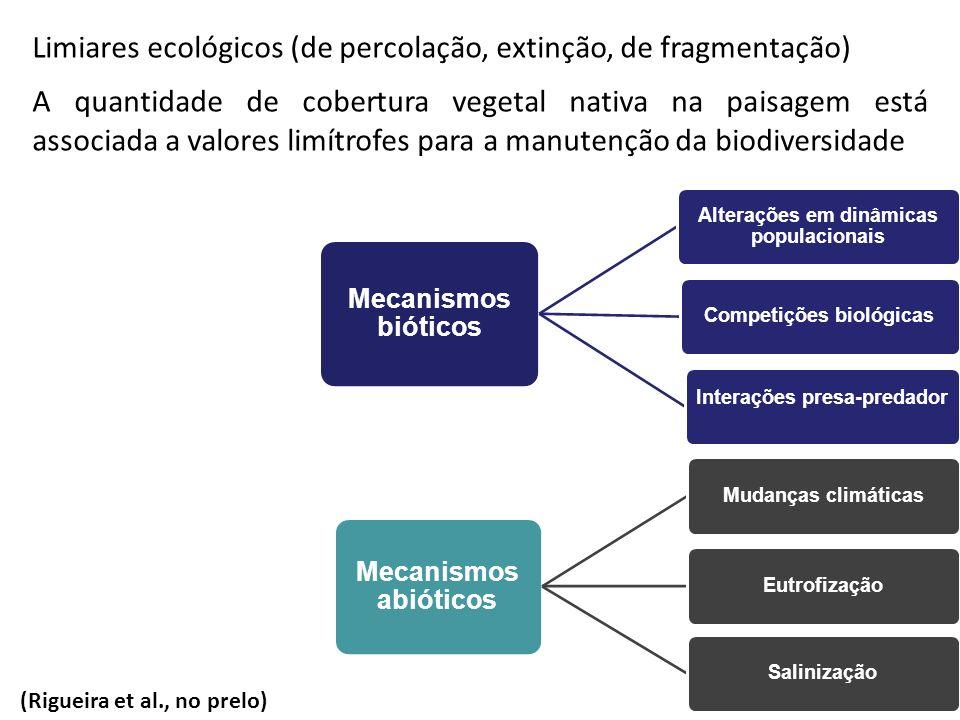 Mudanças na estrutura da paisagem