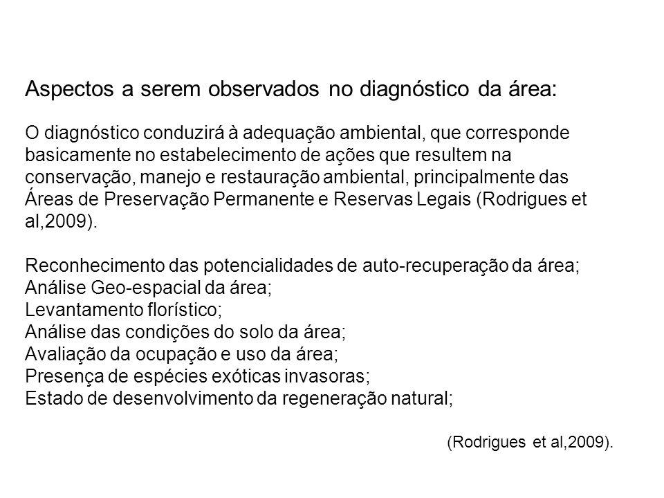 Aspectos a serem observados no diagnóstico da área: