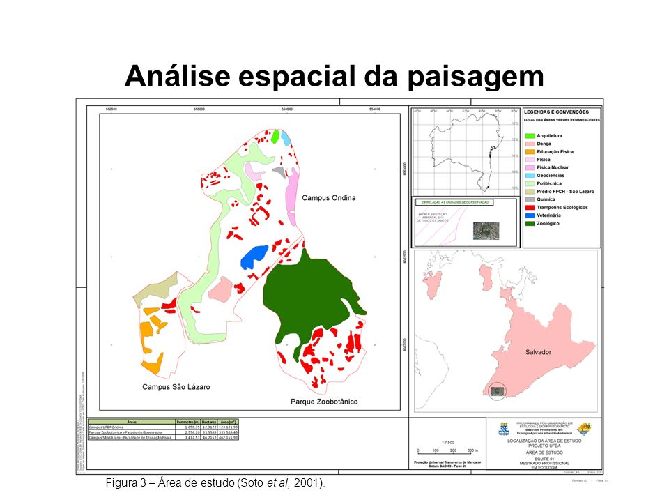 Análise espacial da paisagem