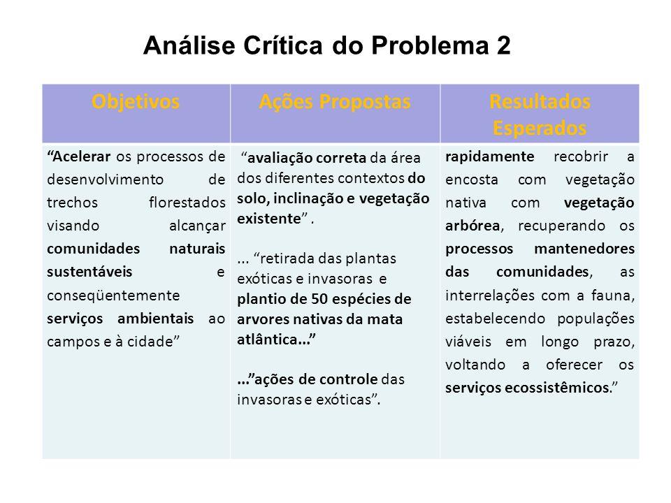 Análise Crítica do Problema 2