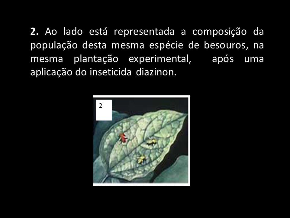 2. Ao lado está representada a composição da população desta mesma espécie de besouros, na mesma plantação experimental, após uma aplicação do inseticida diazinon.