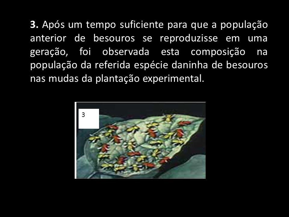 3. Após um tempo suficiente para que a população anterior de besouros se reproduzisse em uma geração, foi observada esta composição na população da referida espécie daninha de besouros nas mudas da plantação experimental.