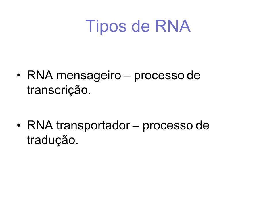Tipos de RNA RNA mensageiro – processo de transcrição.
