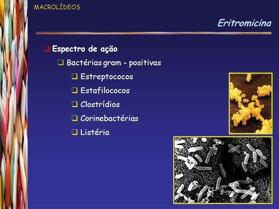 Eritromicina Espectro de ação Bactérias gram - positivas Estreptococos