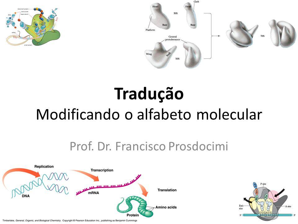 Tradução Modificando o alfabeto molecular