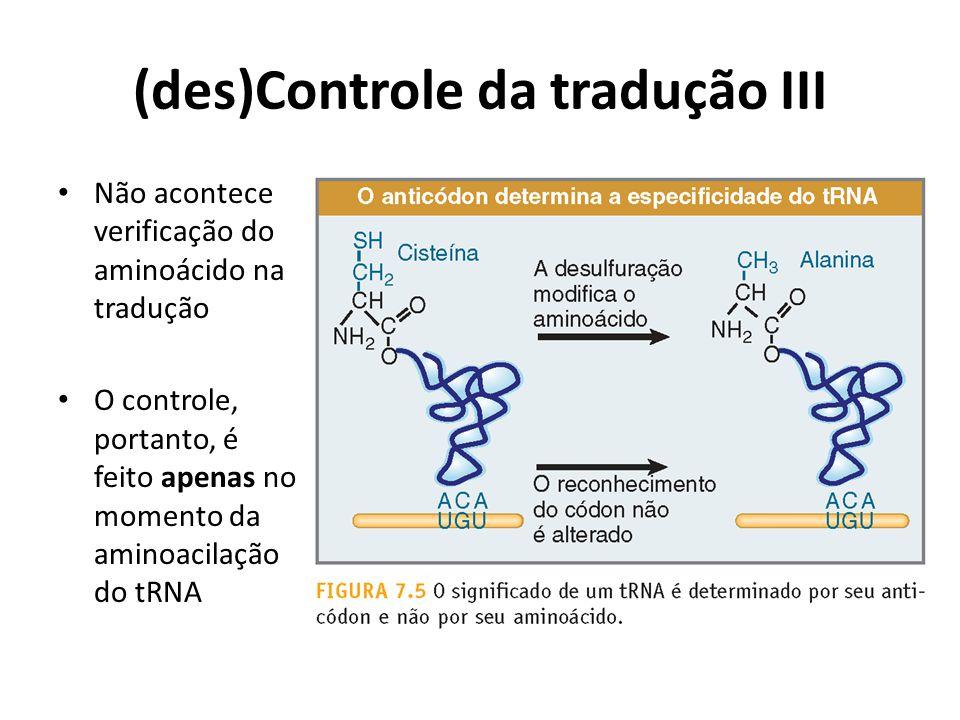 (des)Controle da tradução III