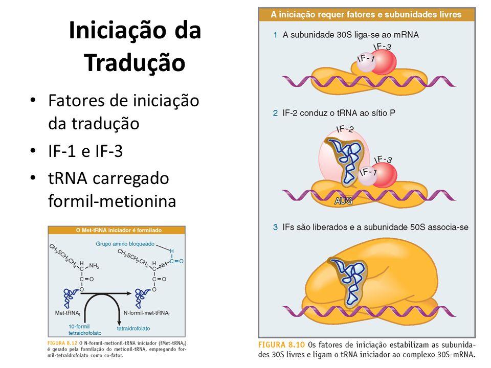 Iniciação da Tradução Fatores de iniciação da tradução IF-1 e IF-3