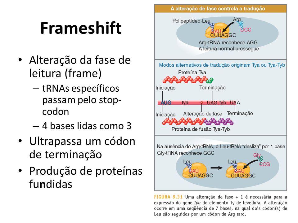 Frameshift Alteração da fase de leitura (frame)