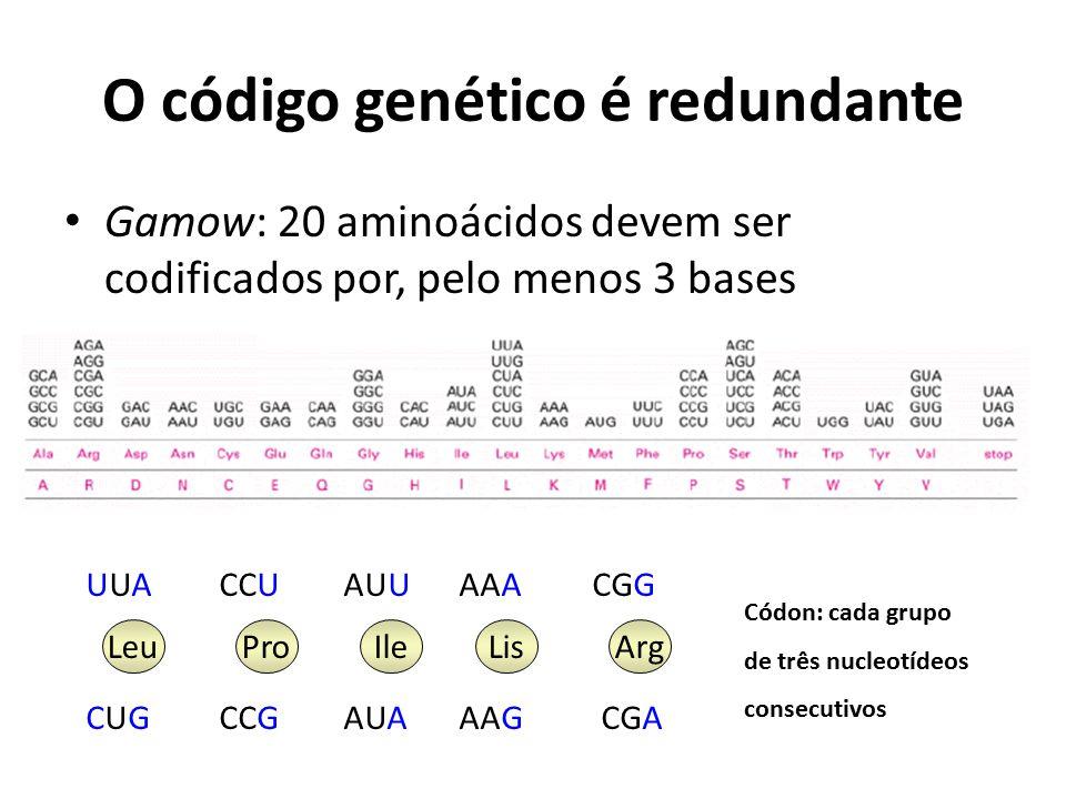 O código genético é redundante
